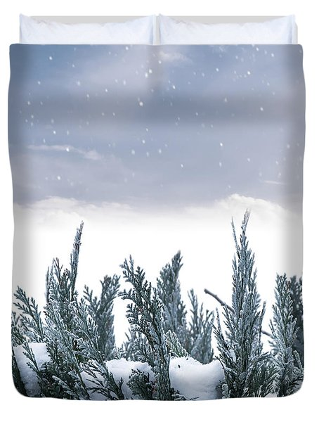 Spruce In Snow Duvet Cover by Wim Lanclus