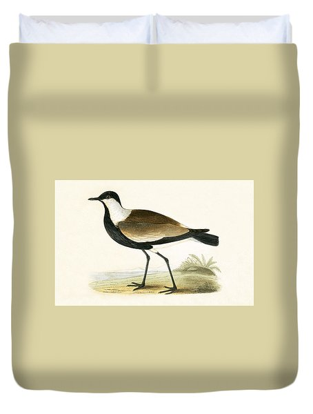 Spur Winged Plover Duvet Cover by English School