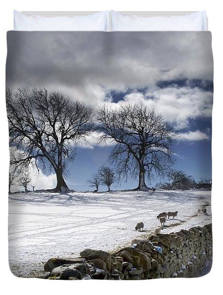 Stone Fence, Weardale, County Durham Duvet Cover by John Short