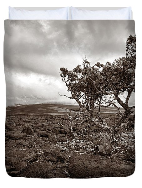 Storm Moving In - Sepia Duvet Cover by Christopher Holmes