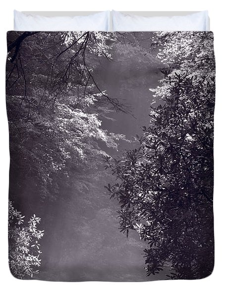 Stream Light B W Duvet Cover by Steve Gadomski