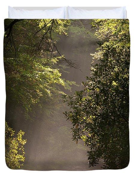 Stream Light Duvet Cover by Steve Gadomski