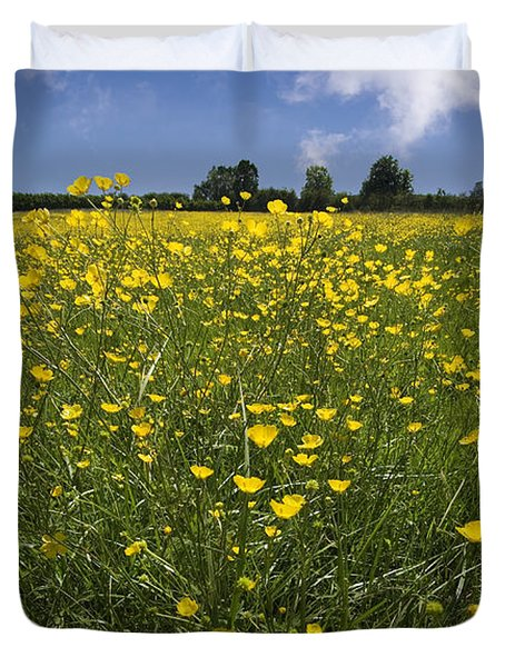 Summer Buttercups Duvet Cover by Meirion Matthias
