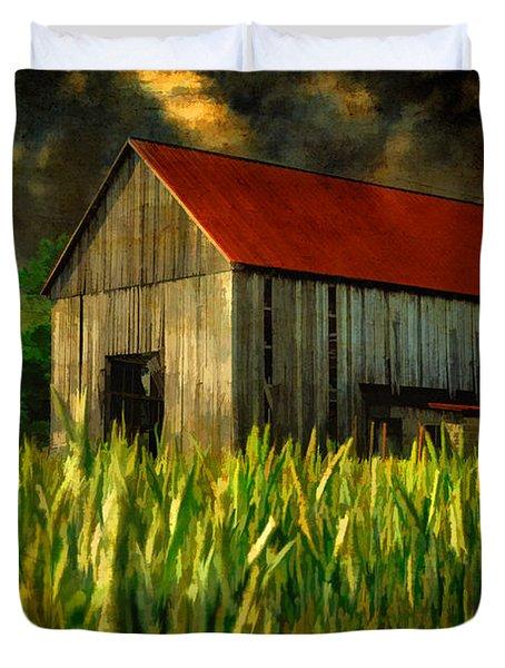 Summer Storm Duvet Cover by Lois Bryan