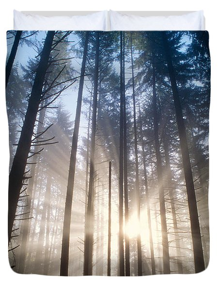 Sunburst In The Forest Duvet Cover by Greg Vaughn - Printscapes