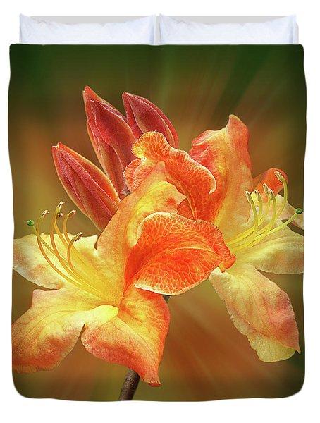 Sunburst Orange Azalea Duvet Cover by Gill Billington