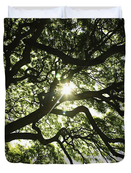 Sunburst Through Tree Duvet Cover by Brandon Tabiolo - Printscapes