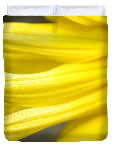 Sunflower Duvet Cover by Mary Van de Ven - Printscapes