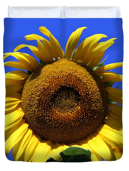 Sunflower Series 09 Duvet Cover by Amanda Barcon