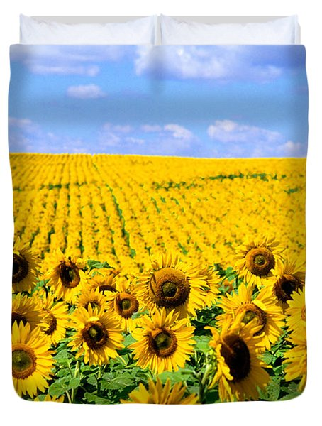 Sunflowers Duvet Cover by Bill Bachmann and Photo Researchers