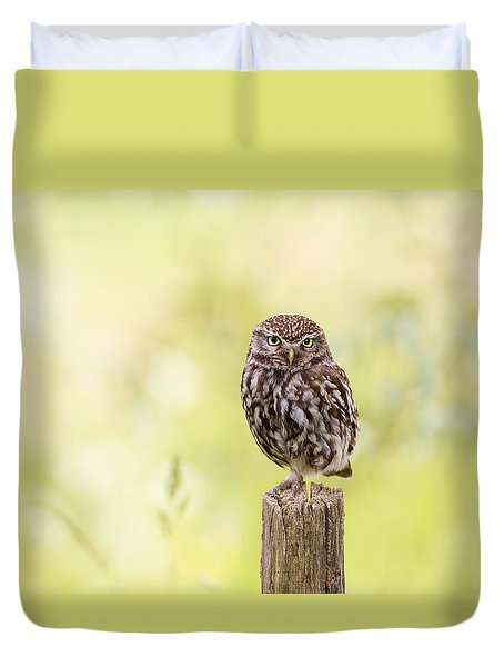 Sunken In Thoughts - Staring Little Owl Duvet Cover by Roeselien Raimond
