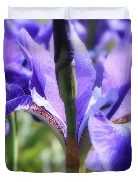 Sunlight on Blue Irises Duvet Cover by Carol Groenen