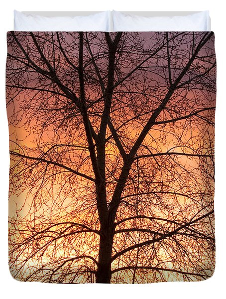 Sunrise December 16th 2010 Duvet Cover by James BO  Insogna