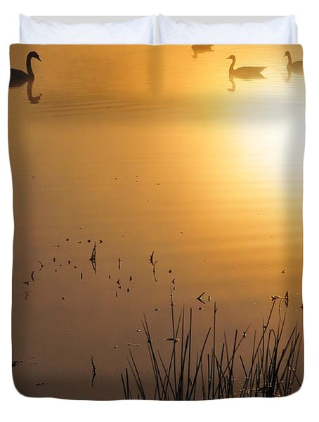 Sunrise Swim Duvet Cover by Catherine Reusch  Daley