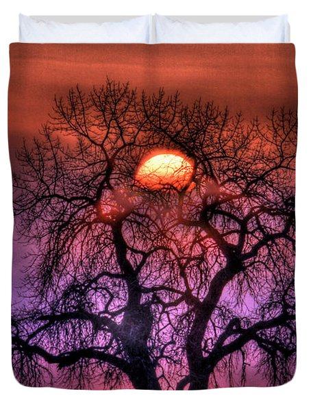 Sunrise Through The Foggy Tree Duvet Cover by Scott Mahon
