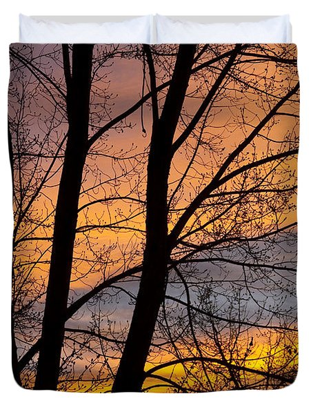 Sunset Through The Tree Silhouette Duvet Cover by James BO  Insogna