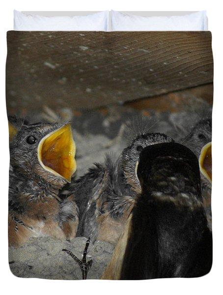 Swallows Opera  Duvet Cover by Ernie Echols
