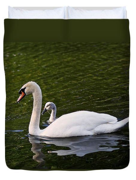 Swan Mother With Cygnet Duvet Cover by Rona Black