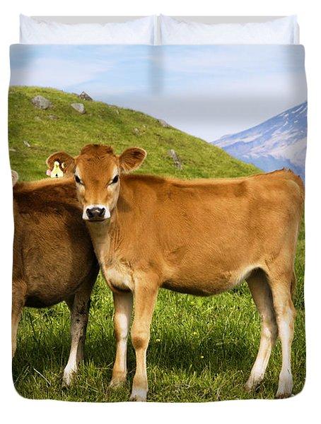Taranaki, Dairy cows Duvet Cover by Himani - Printscapes