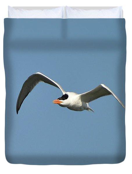 Tern Flight Duvet Cover by Al Powell Photography USA