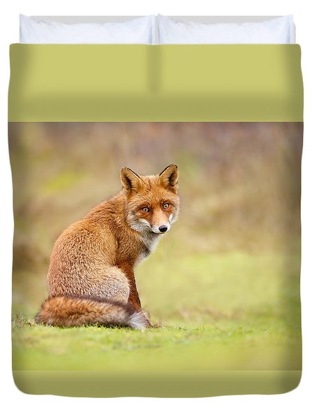 That Look - Red Fox Male Duvet Cover by Roeselien Raimond