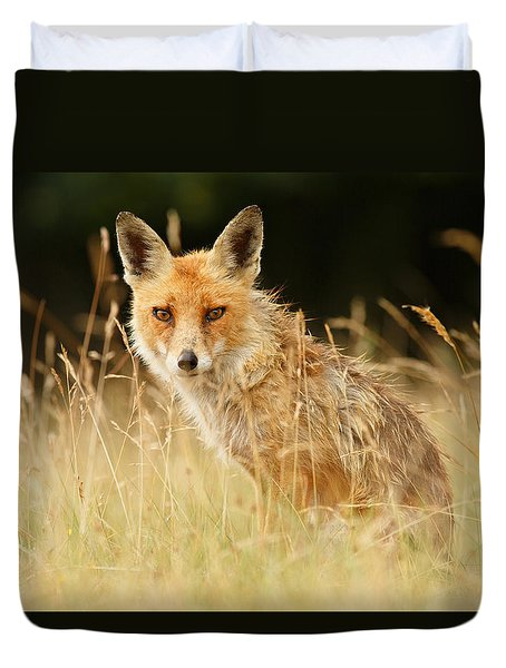 The Catcher In The Grass - Wild Red Fox Duvet Cover by Roeselien Raimond