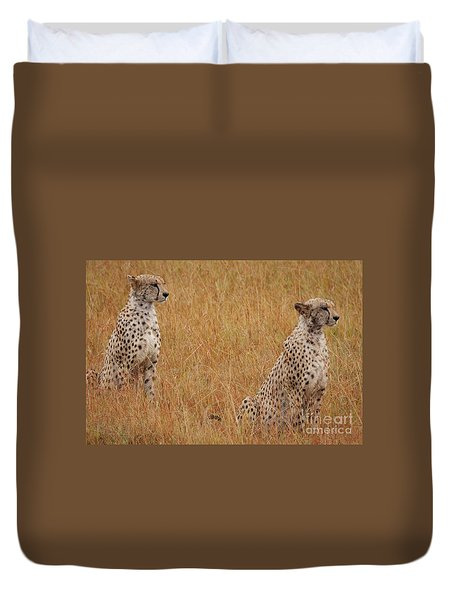 The Cheetahs Duvet Cover by Stephen Smith