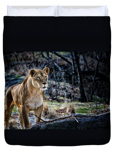 The Lioness Duvet Cover by Karol  Livote