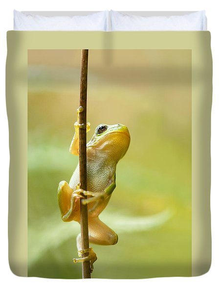 The Pole Dancer - Climbing Tree Frog  Duvet Cover by Roeselien Raimond