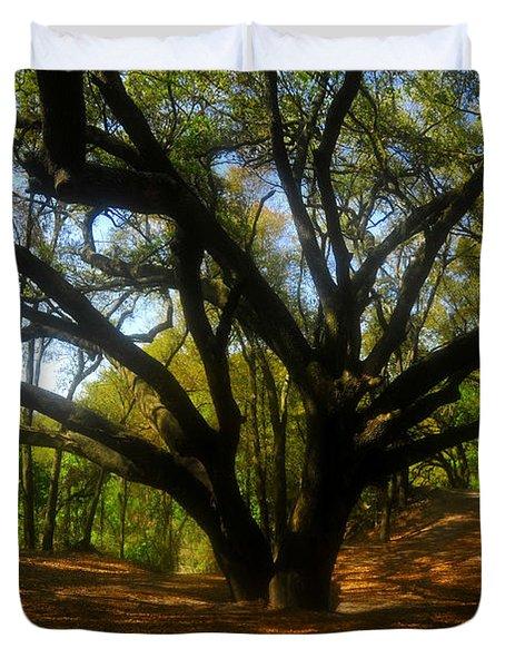 The Sacred Oak Duvet Cover by David Lee Thompson