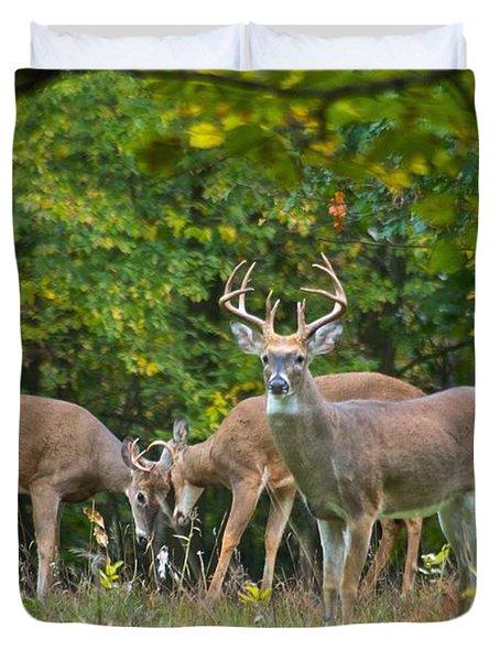 Three Bucks_0054_4463 Duvet Cover by Michael Peychich