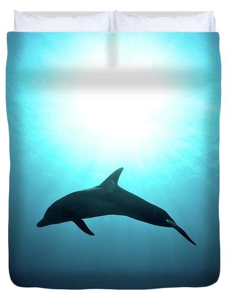 three year old Dolphin  Duvet Cover by Hagai Nativ