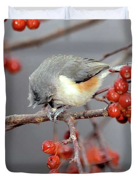 Titmouse Breakfast Duvet Cover by Betty LaRue