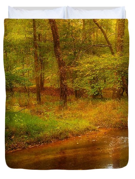 Tranquility Stream - Allaire State Park Duvet Cover by Angie Tirado