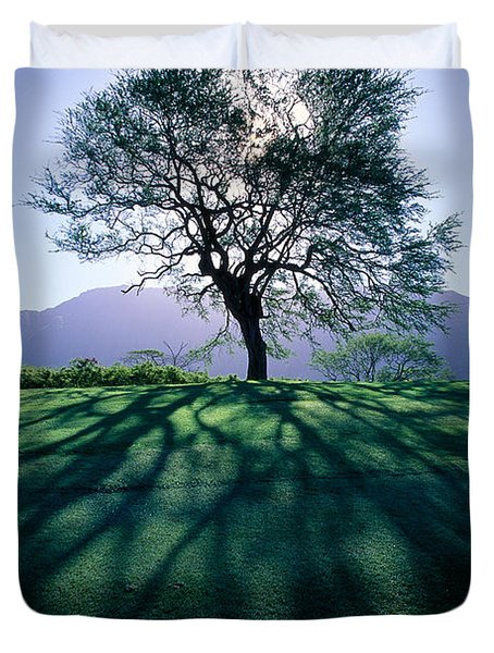 Tree On Grassy Knoll Duvet Cover by Carl Shaneff - Printscapes