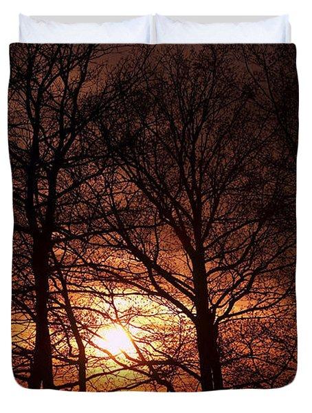 trees at sunset Duvet Cover by Michal Boubin