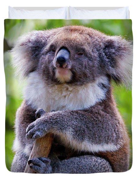 Treetop Koala Duvet Cover by Mike  Dawson