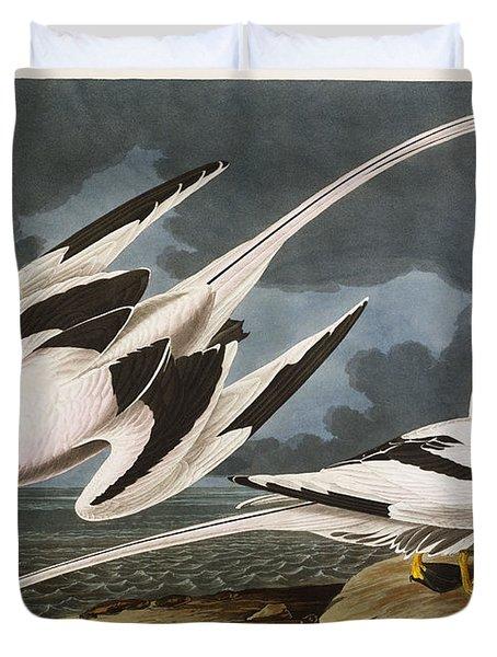 Tropic Bird Duvet Cover by John James Audubon