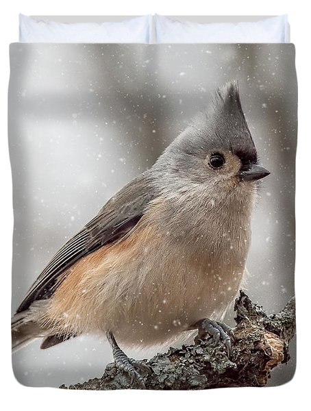 Tufted Titmouse In The Snow Duvet Cover by Pat Eisenberger