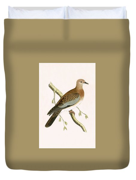 Turtle Dove Duvet Cover by English School