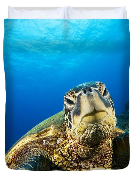 Turtle Stare Duvet Cover by Dave Fleetham - Printscapes