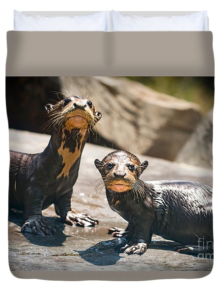Twins Duvet Cover by Jamie Pham
