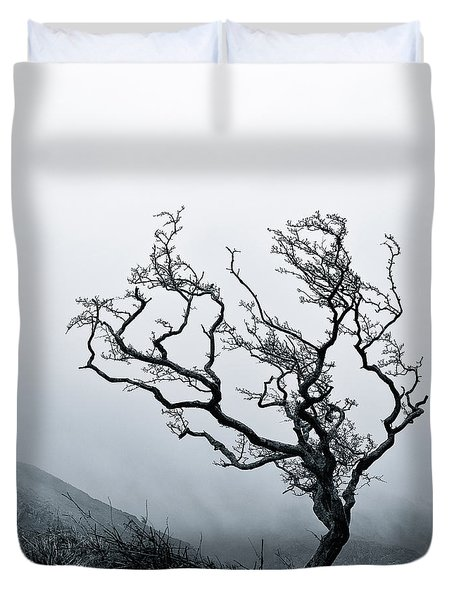 Twisted Duvet Cover by Dave Bowman