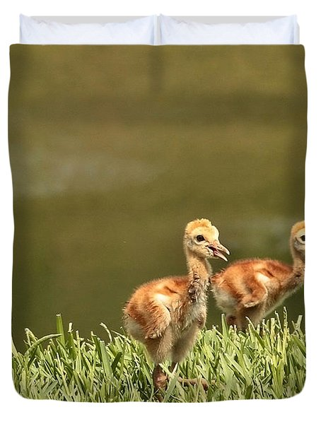 Two Chicks Duvet Cover by Carol Groenen