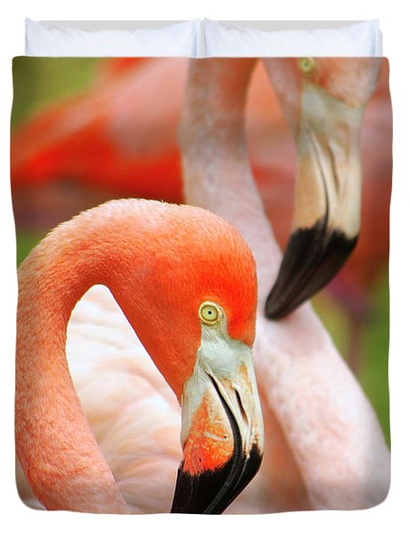 Two Flamingoes Duvet Cover by Carlos Caetano