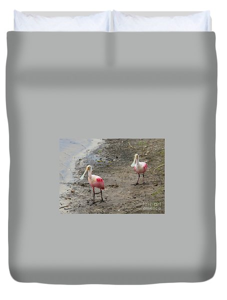 Two Roseate Spoonbills 2 Duvet Cover by Carol Groenen