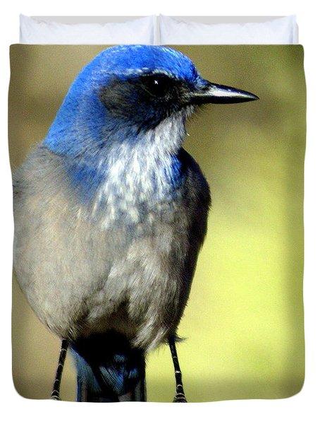 Utah Bird Duvet Cover by Marty Koch