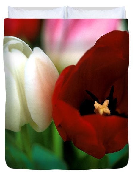 Valentine Tulips Duvet Cover by Kathy Yates