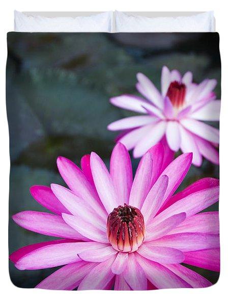 Vibrant Waterlilies Duvet Cover by Dana Edmunds - Printscapes