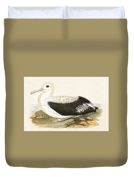 Wandering Albatross Duvet Cover by English School